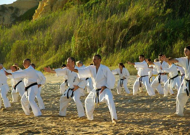 výcvik karate