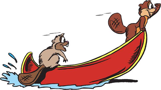 bobři na lodi